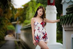 Hintergrundbilder Asiaten Bokeh Pose Braune Haare Hand Kleid junge Frauen