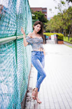 Photo Asian Brown haired Posing Fence Jeans Blouse Staring Girls
