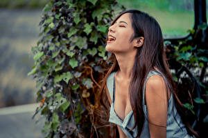 Image Asiatic Gown Décolletage Laughter Bokeh Girls