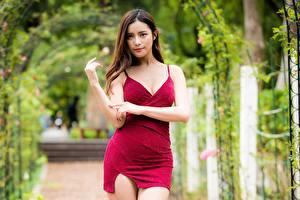 Hintergrundbilder Asiaten Kleid Blick Braune Haare Hand Bokeh Mädchens