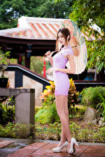 Bilder Asiatische Kleid Bein Regenschirm Stöckelschuh Mädchens