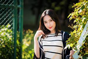 Fotos Asiatische Starren Bokeh Brünette Mädchens