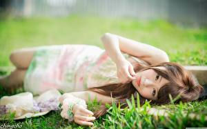 Image Asian Grass Brown haired Bokeh Hands Glance Lying down young woman