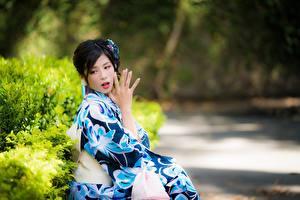 Bilder Asiatisches Unscharfer Hintergrund Brünette Hand Kimono Sitzt Japanese junge frau