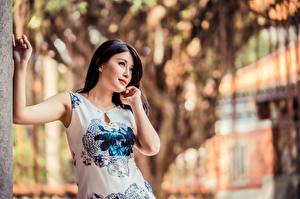 Fotos Asiaten Pose Kleid Bokeh Brünette Mädchens