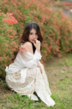 Fotos Asiatische Sitzen Kleid Blick Unscharfer Hintergrund Braune Haare junge Frauen
