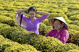 Pictures Asiatic Two Brunette girl Hat Work Vietnamese young woman