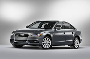 Photo Audi Gray Metallic  auto