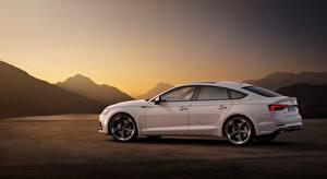 Bilder Audi Weiß Seitlich Limousine S5, Sportback, TDI, 2019 automobil