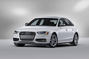 Pictures Audi White Metallic