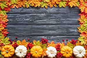 Hintergrundbilder Herbst Kürbisse Vorlage Grußkarte Bretter Blattwerk