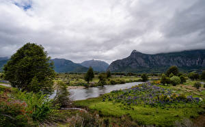 Pictures Chile Mountains River Landscape photography Clouds Trees Patagonia