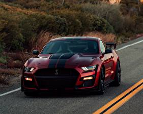 Fotos Ford Rot Mustang Shelby GT500 2019