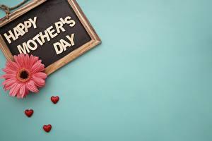 Обои Гербера День матери Шаблон поздравительной открытки цветок