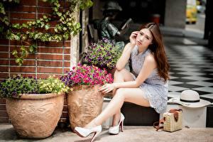 Fotos Handtasche Asiatische Der Hut Braunhaarige Kleid Sitzt Bein High Heels Unscharfer Hintergrund Schön junge frau