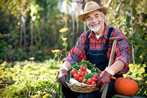 Desktop hintergrundbilder Mann Tomate Kürbisse Radieschen Lächeln Der Hut Unscharfer Hintergrund