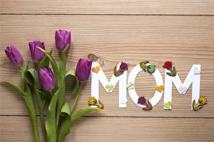 Image Mother's Day Tulip Wood planks