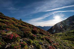 Fotos Gebirge Himmel Rhododendren Andorra Sonne Pyrenees