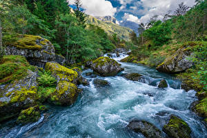 Фото Норвегия Гора Парк Реки Камни Мха Folgefonna National Park Природа