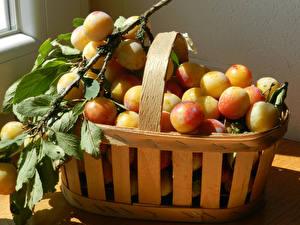 Fotos Pflaume Viel Weidenkorb Ast Cherry plum Lebensmittel