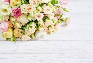 Hintergrundbilder Rose Sträuße Bretter Vorlage Grußkarte Blüte
