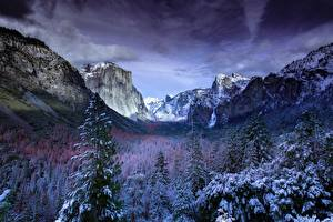 Pictures Scenery Forests USA Winter Park Snow Yosemite