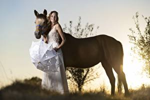 Pictures Sunrises and sunsets Horse 2 Smile Parasol animal