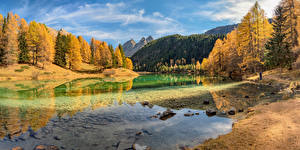Bakgrundsbilder på skrivbordet Schweiz Höst Berg Insjö Träd Lake Palpuogna