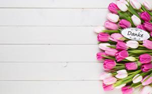 Hintergrundbilder Tulpen Blumensträuße Bretter Wort Deutsche Vorlage Grußkarte Blüte