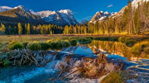 Picture USA Mountains Forest River Landscape photography Dam Sawtooth National Forest
