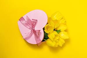 Bilder Valentinstag Tulpen Farbigen hintergrund Herz Schleife Geschenke Blumen