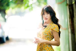 Bakgrunnsbilder Asiater Bokeh Brunt hår kvinne Hender Ser Kjole ung kvinne
