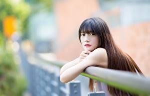 Fotos Asiaten Unscharfer Hintergrund Braunhaarige Hand Starren Haar junge frau