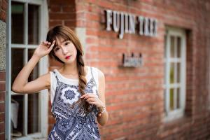 Bakgrunnsbilder Asiater Brunt hår kvinne Uklar bakgrunn Flette Hender Ser Unge_kvinner