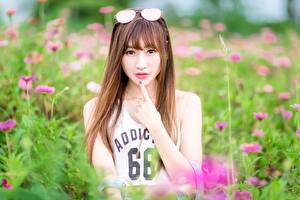 Picture Asiatic Brown haired Staring Glasses Hands Blurred background female