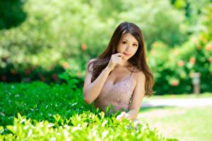 Hintergrundbilder Asiatische Nett Kleid Starren Bokeh