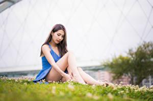 Wallpapers Asiatic Dress Legs Sitting Bokeh female
