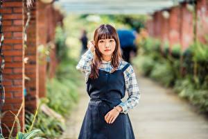 Bilder Asiatisches Starren Bokeh junge frau