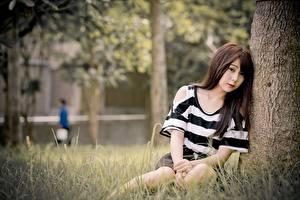 Wallpaper Asiatic Grass Bokeh Brown haired Sitting Girls
