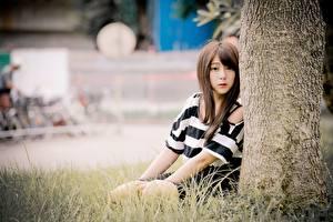 Bakgrunnsbilder Asiater Gress Uklar bakgrunn Brunt hår kvinne Sitter Ser ung kvinne