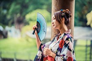 Fotos Asiaten Kimono Fächer Unscharfer Hintergrund junge frau
