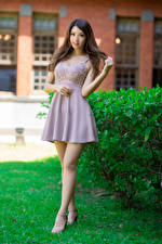 Pictures Asiatic Pose Dress Legs Staring Brown haired young woman