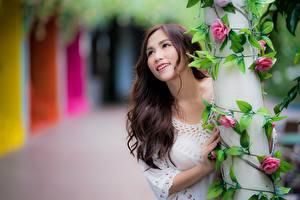 Bilder Asiatische Strauch Bokeh Braunhaarige Blick Lächeln Hand Mädchens