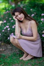 Bilder Asiaten Sitzt Kleid Starren Braune Haare