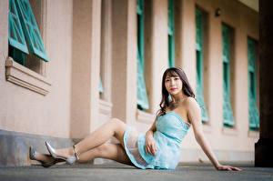 Fondos de escritorio Asiática Sentado Vestido Pierna Contacto visual mujeres jóvenes