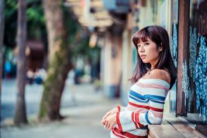 Papel de Parede Desktop Asiática Suéter Ver Bokeh moça