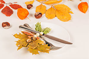Image Autumn Knife Chestnut Plate Fork Foliage Nature