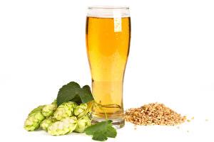 Photo Beer Hops White background Highball glass Grain Food