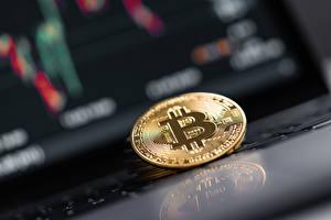 Bakgrunnsbilder Bitcoin Mynter Penger Bokeh Gull farge Refleksjon