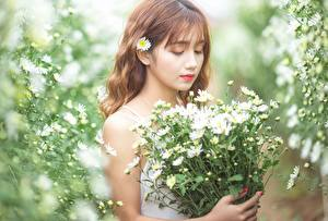 Wallpaper Bouquet Camomiles Asiatic Bokeh Brown haired Girls